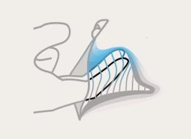 stimulare punctul g cu degetele ilustratie
